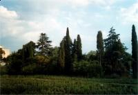 Parcul Nikita detaliu